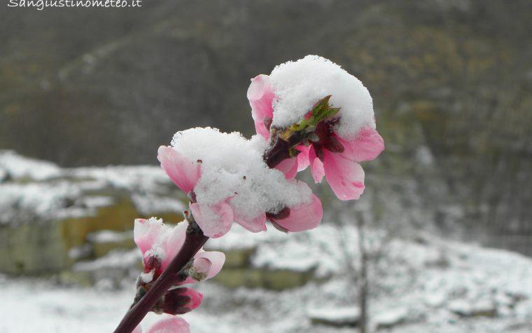 In settimana colpo di coda dell'Inverno