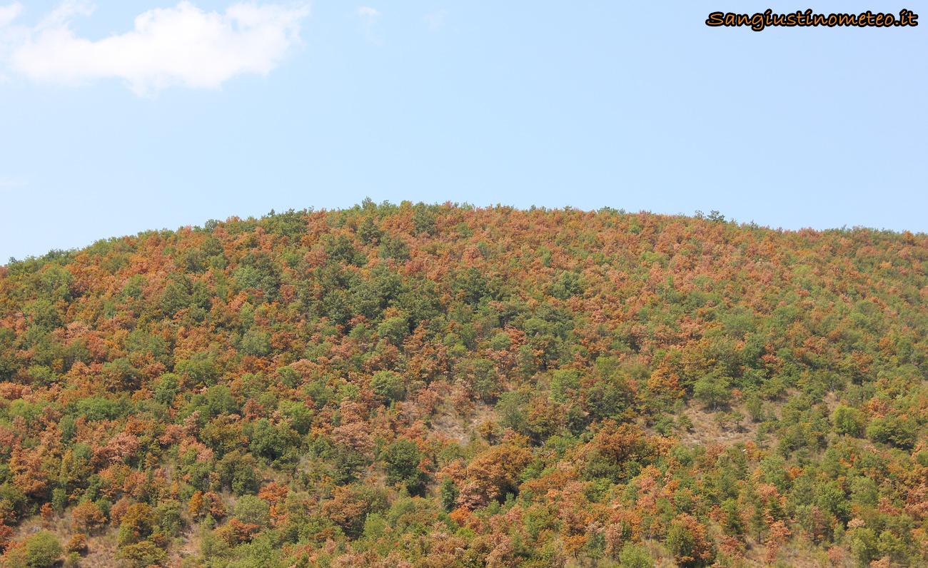 San Giustino siccità Agosto 2017