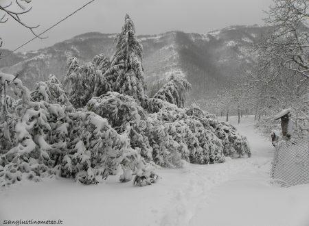 Tanta neve in collina