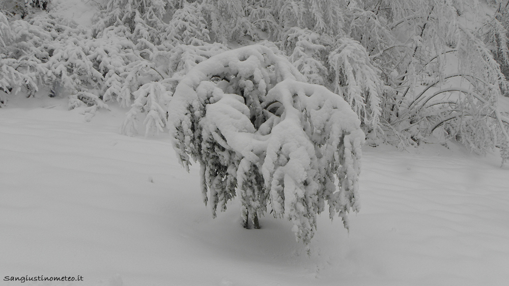 Neve Cantone San Giustino dicembre 2018